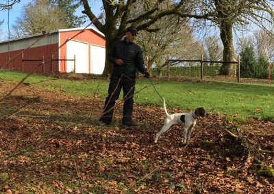 Dave Bale preparing a white-black dog for an upland hunting training in Salem, Oregon