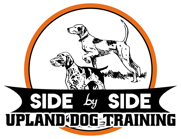 Side By Side Upland Dog Training